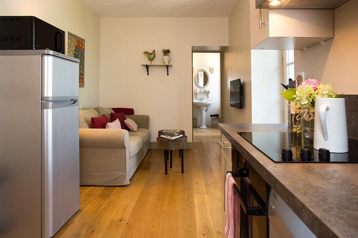 Appartement Aurore-Les Hauts de Condom-Les Bruhasses-Maison hotes de charme-Condom-Gers-4